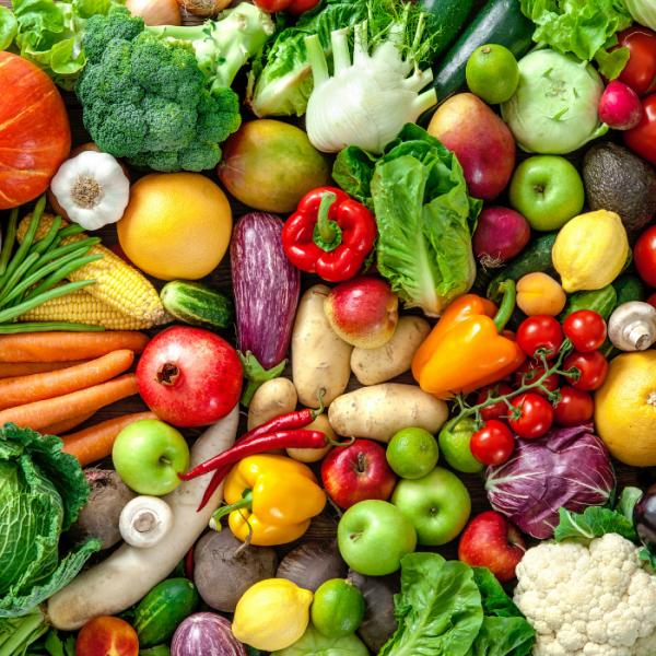 Frisches Gemüse wie Brokkoli, Fenchel, Möhren